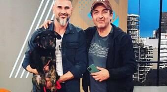 Ator argentino invade programa para procurar dono de cão