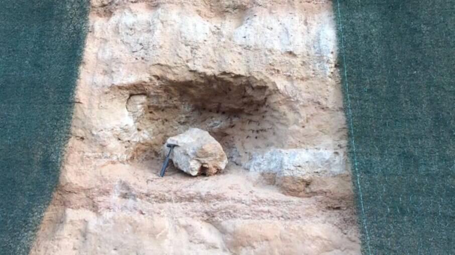 Fóssil encontrado em Marília (SP)