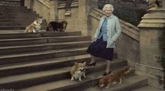 Cães da rainha Elizabeth II têm quarto e túmulo próprio