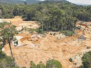 Rondônia lidera as áreas desmatadas neste ano, segundo o Imazon