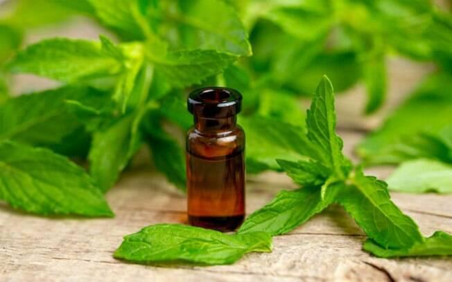 O óleo de hortelã pimenta é refrescante e pode ser usado para combater dores de cabeça e enxaquecas