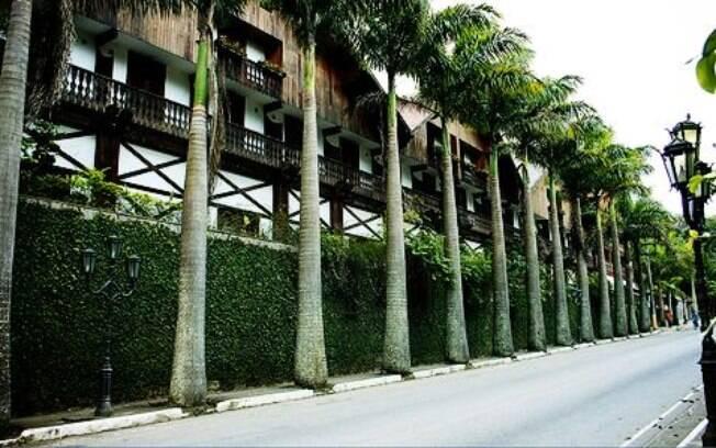 Palmeiras imperiais marcam a paisagem de Teresópolis