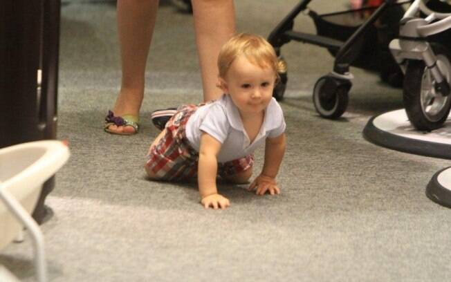 Gracioso, o bebê de 10 meses engatinha pela loja