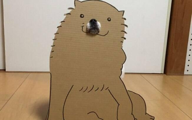 Artista japonesa cria fantasia pro seu cachorro com folhas de papelão