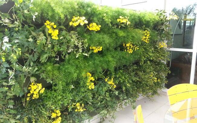 ideias jardins verticais : ideias jardins verticais:36 ideias para montar o seu jardim vertical – Jardinagem – iG