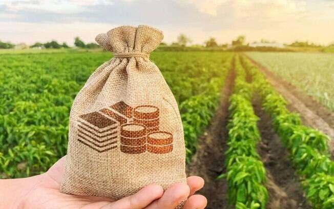 Exportações do agronegócio brasileiro atingem US$ 11,3 bi em julho e tem um salto de 15,8%