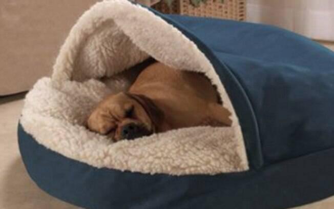 Se o seu cachorro é friorento, escolha o modelo de cama para cachorro 'iglu' ou o com cobertor embutido, como a da foto