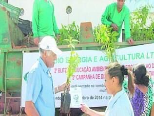 As mudas entregues à população são de árvores nativas da região