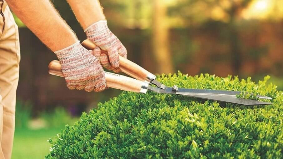 Tesoura de jardinagem