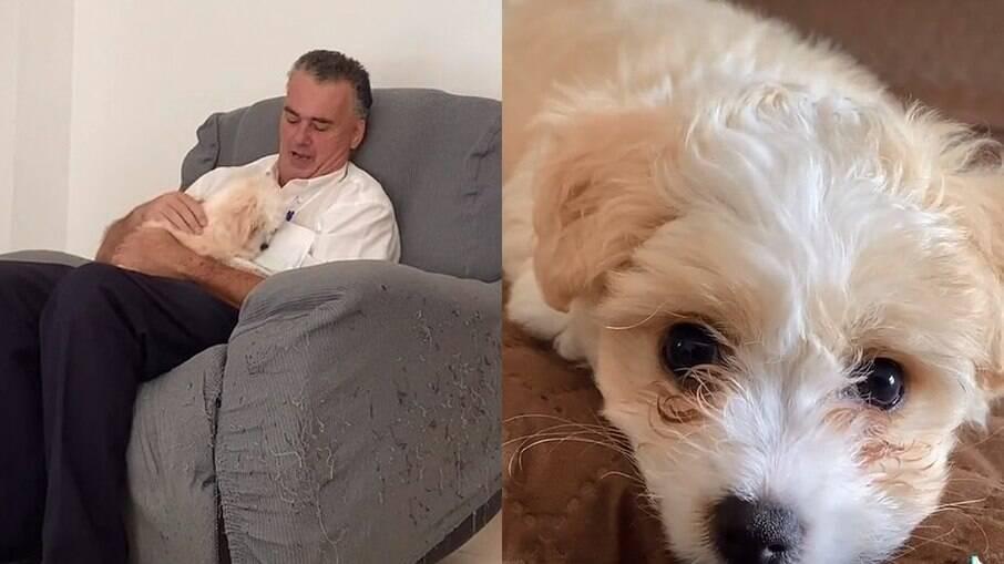 Pai que não queria saber de cachorro, não resiste aos encantos do filhote