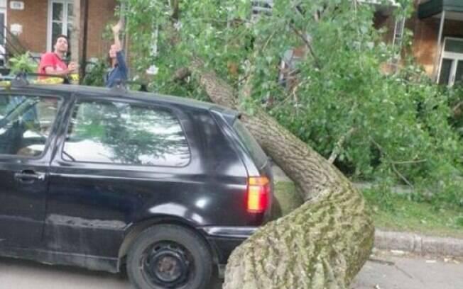Foi por muito pouco. Parecia até um acordo mútuo entre o carro e a árvore de não se chocarem.