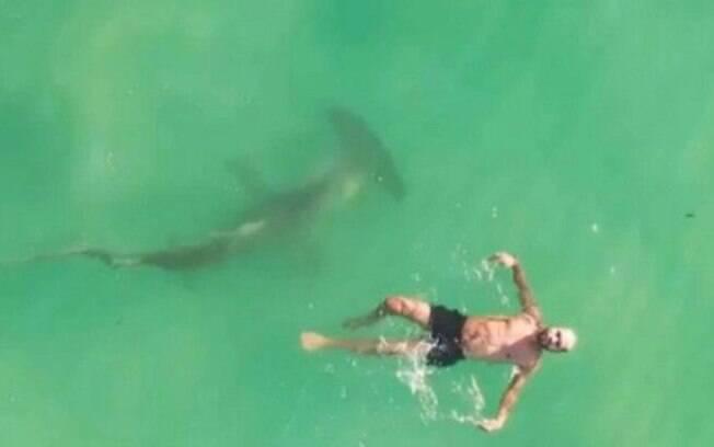 Em entrevista, fotógrafo disse que não teve como avisar o homem da presença do animal