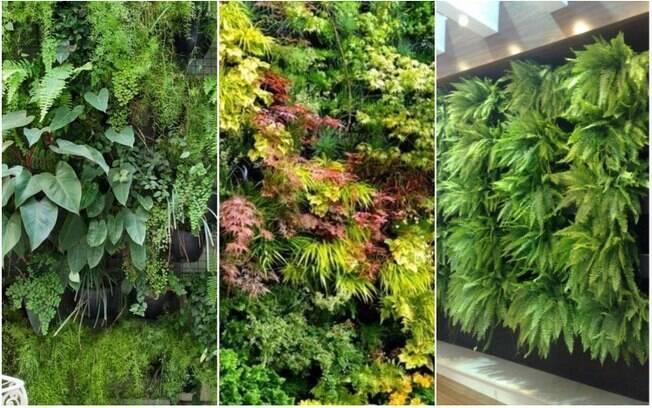 Com estruturas próprias ou vasos bem agrupados e plantas bastante volumosas, é possível criar uma