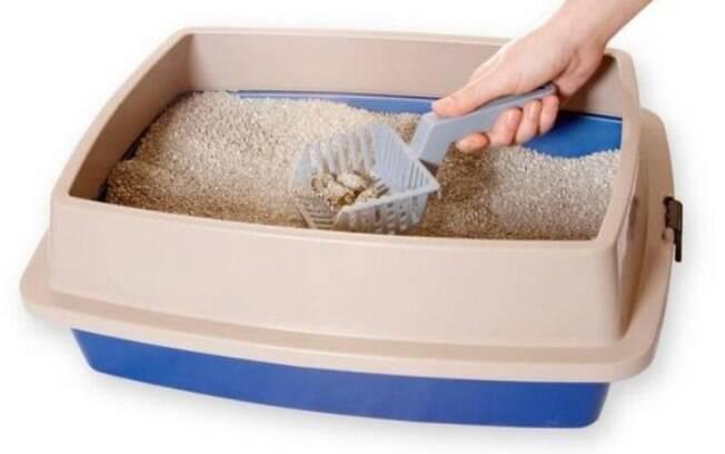 Para quem tem gatos em casa, a caixa de areia é um item indispensável