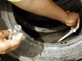 Medidas de controle e prevenção são essenciais para eliminar o mosquito da dengue