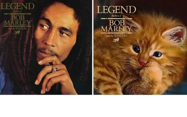 Artistas substitui cantores por gatinho em grande álbuns da música