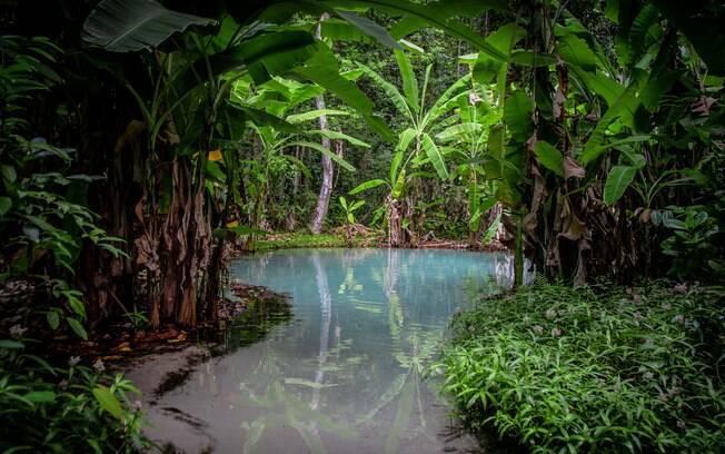 O Jalapão tem diversos oásis lindos para visitar