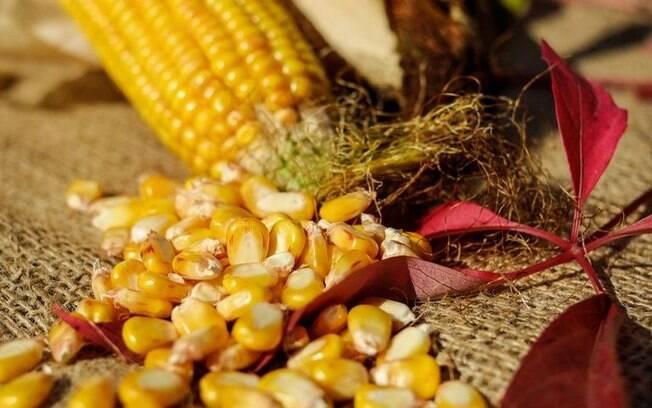 Simpatias com milho para melhorar a sua vida!
