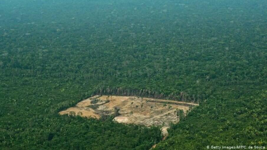 Desmatamento da Amazônia atingiu em 2020 maior valor desde 2008
