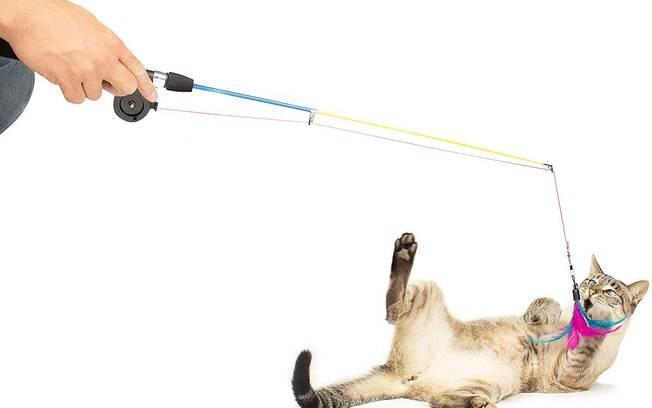 Varinha pesca gatinho é um bom brinquedo para interagir com seu felino e desenvolver seus instintos