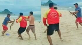 Filhote de jacaré é motivo de briga em praia do Rio