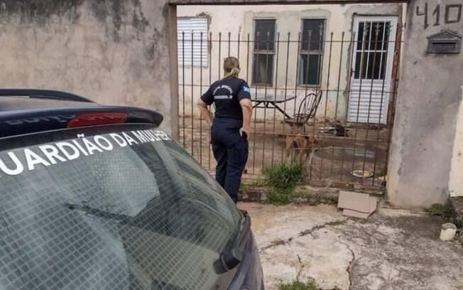 Casal se muda e abandona cães sozinhos em casa de Artur Nogueira