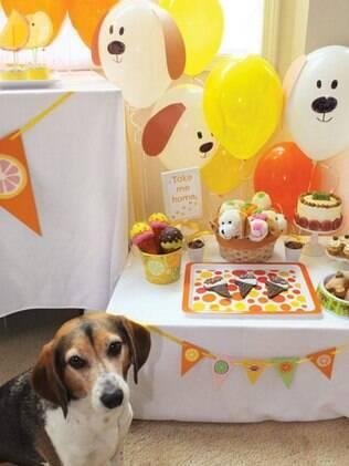 Organizar uma festa de aniversário para cachorro está se tornando uma prática comum