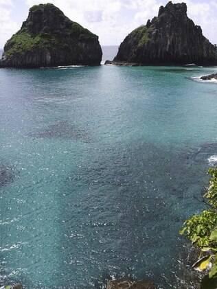 Ambientalistas preocupam-se com a vinda do Ocean Dream à ilha