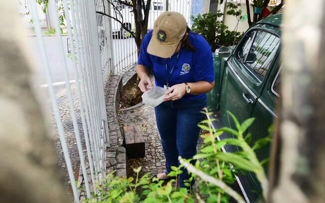 Campinas emite alerta para alta de dengue em diversos bairros