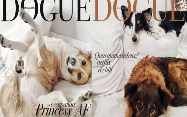 Desafio Vogue: cães são inclusos na brincadeira
