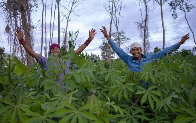 Indígenas com plantação na terra Huni Kuin