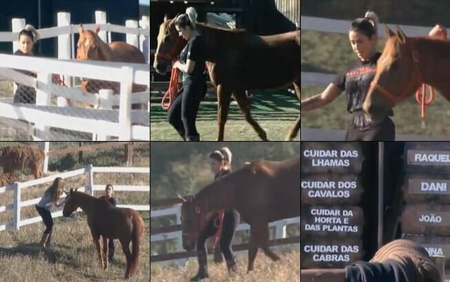 Solidariedade: peões ajudam Dani Bolina a cuidar dos cavalos