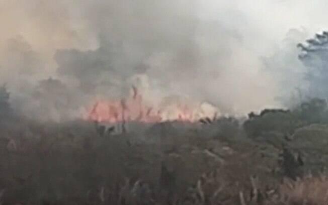 Área de mata pega fogo no distrito de Barão em Campinas