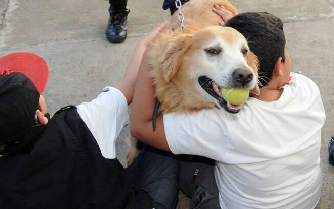 Estado anuncia 8 clínicas veterinárias gratuitas
