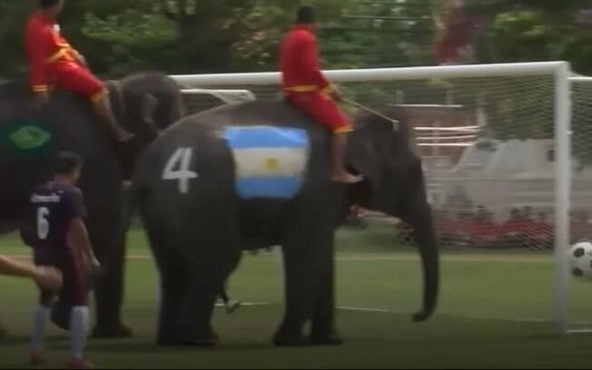 Os elefantes foram pintados com as bandeiras de vários países que estão disputando a Copa do Mundo, incluindo o Brasil
