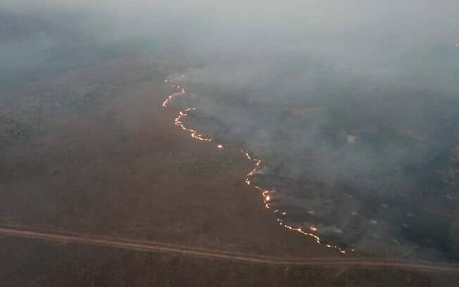 Alertas de desmatamento bateram recorde na Amazônia durante janeiro
