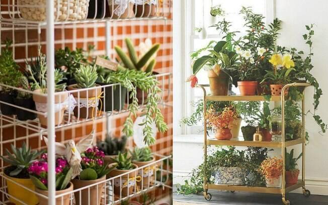 Os carrinhos com os vasos podem ser levados para diversos locais da casa. Além disso, o jardim vertical fica diversificado