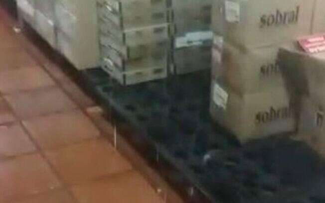 Chuva danifica almoxarifado de Valinhos e remédios vão para o lixo