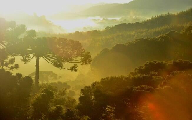 Monte Verde é um destino bem romântico que encanta por suas paisagens e pela hospitalidade e simpatia de moradores