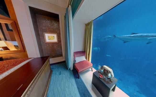 Arraias e tubarões deslizam rente à janela do quarto