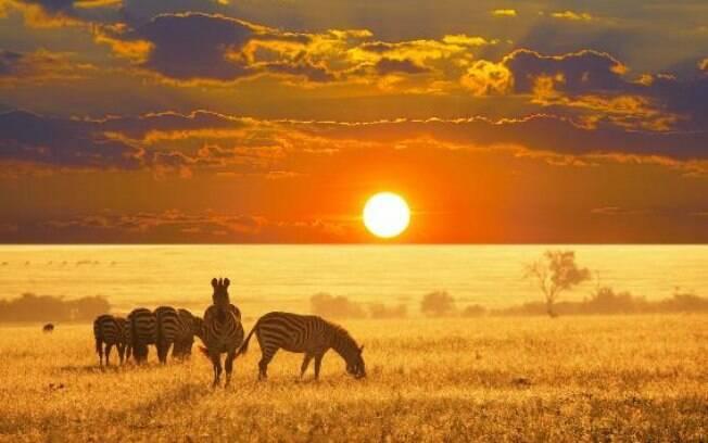 Hartbeespoort é possível realizar safari e ver diversos animais de perto