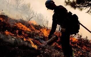 Mais de 600 pessoas desapareceram e 66 morreram nos incêndios na Califórnia