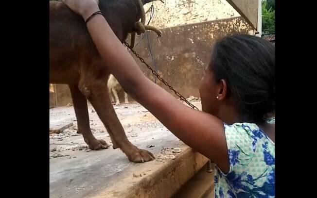Mulher pedindo que não levem o cachorro comunitário