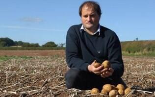 O agricultor que foi de falido a milionário com batatas de luxo - Home - iG
