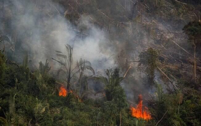 Fogo na reserva extrativista Jaci-Paraná Extractive Reserve, em Porto Velho (RO)