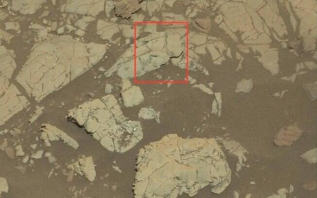 Segundo cientista, fosseis descobertos pela Nasa são resquícios de vida dos alienígenas e não restos de cristais de rocha