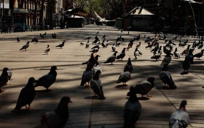 Último crime aconteceu no centro de Barcelona