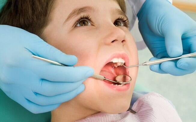Células-tronco extraídas do dente de leite poderão ser usadas no tratamento de futuras doenças