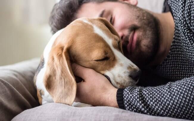 Os animais de estimação fazem com que as pessoas se sintam menos solitárias