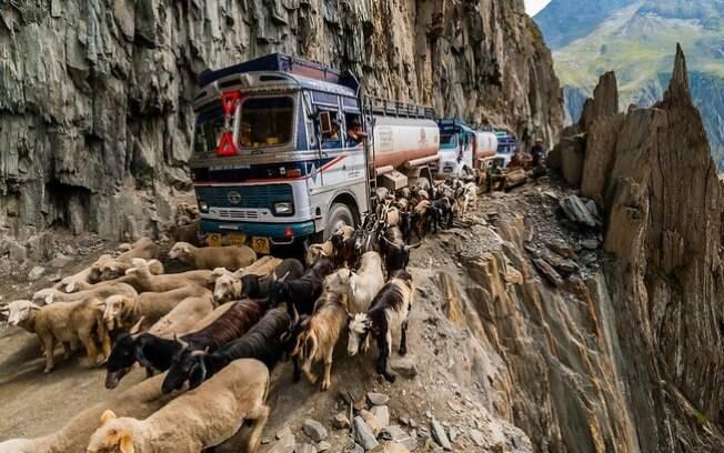 Apertada, sob constante risco de nevasca e deslizamentos de terra e, ainda tem que disputar espaço com as vacas. Essa é a Zoji La, uma das piores estradas da Índia.